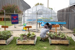 The Seedling Farm will help fight food desert conditions in South Dallas.
