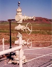 Gas Well Head