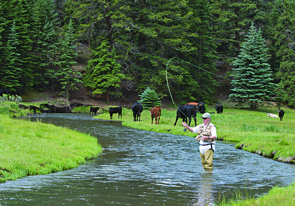 FLY-FISHING IN THE LAND OF ENCHANTMENT