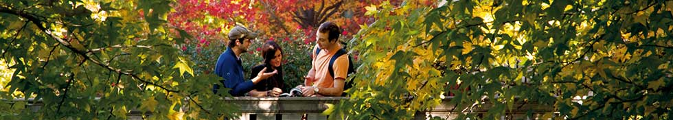 Students meeting in Fall