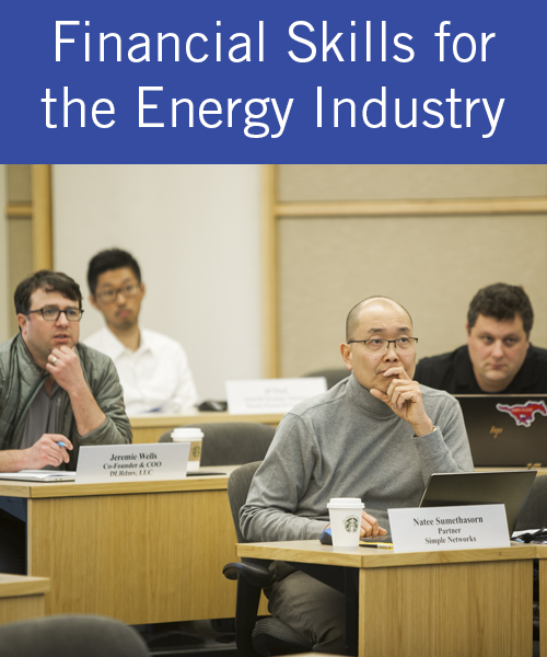 Financial Skills for the Energy Industry