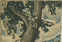 [Oak Tree], By Everett F. Spruce, ca. 1934-1935