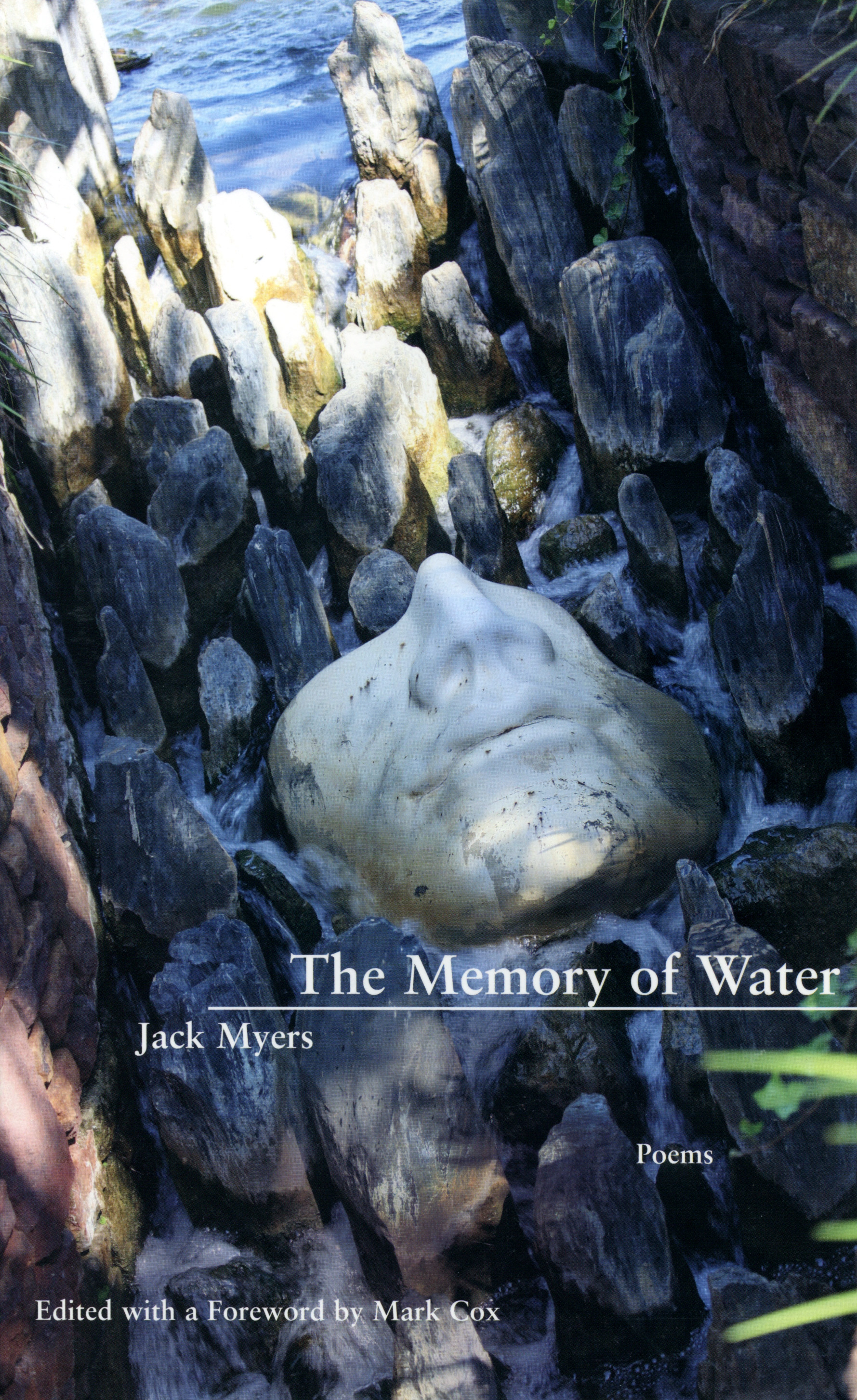 Cover of 'The Memory of Water' by Jack Myers