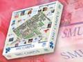 SMU puzzle